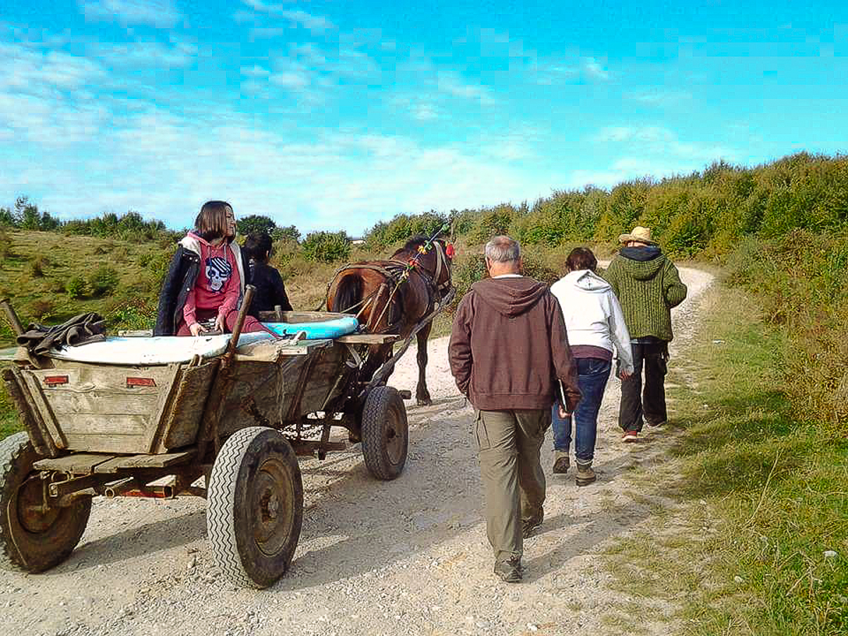 Horse and wagon ride in Vadu Grisliu to the gypsy village, Romania